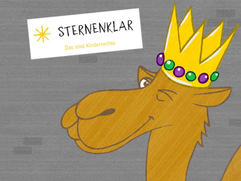 sternsinger_content7